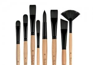 Princeton Catalyst Polytip brushes